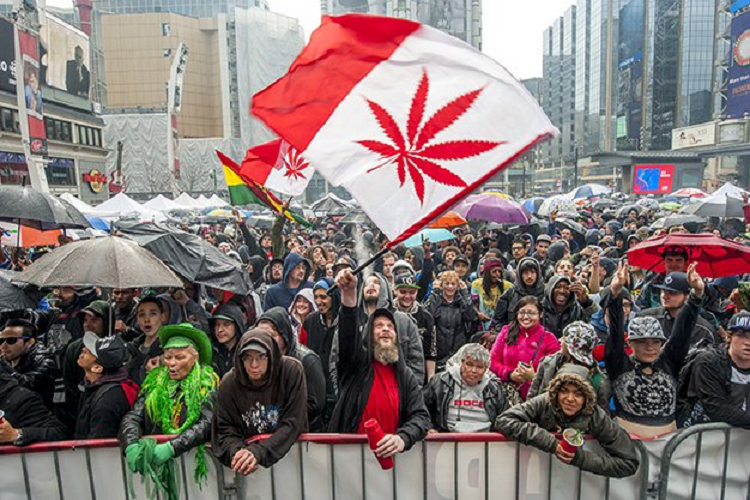 The History of 420: Celebrations of Past and Present